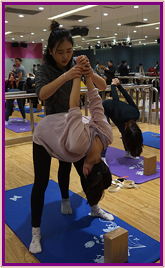 肩颈理疗瑜伽排课【相关词_ 肩颈理疗瑜伽体式】图片